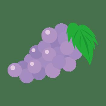 ブドウのイラスト
