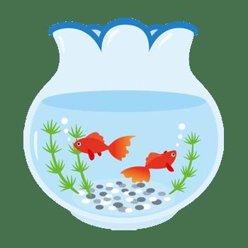 金魚鉢のイラスト